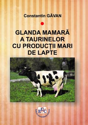 GLANDA MAMARĂ A TAURINELOR CU PRODUCȚII MARI DE LAPTE