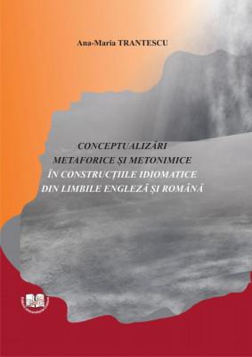 CONCEPTUALIZĂRI METAFORICE ŞI METONIMICE ÎN CONSTRUCŢIILE IDIOMATICE DIN LIMBILE ENGLEZĂ ŞI ROMÂNĂ