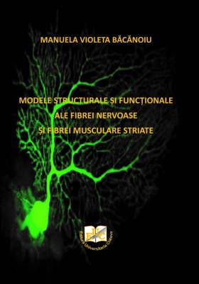 MODELE STRUCTURALE ȘI FUNCȚIONALE ALE FIBREI NERVOASE ȘI FIBREI MUSCULARE STRIATE