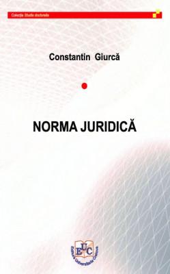 NORMA JURIDICĂ